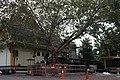 Wat Chetawan 7.jpg