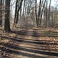 Weg im Schlosspark - panoramio.jpg