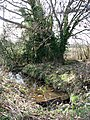 Weir on unnamed stream - geograph.org.uk - 1203360.jpg