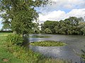 Welham Fishing Lake - geograph.org.uk - 232801.jpg