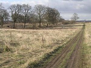 Newton, South Lanarkshire - Image: Westburn Wasteland geograph.org.uk 137994