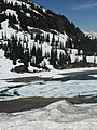 Whistler 2992.jpg