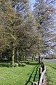 White's Plantation at Radley - geograph.org.uk - 1232472.jpg