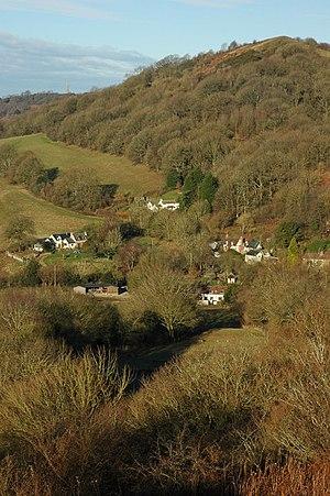 Whiteleaved Oak - Image: Whiteleaved Oak and Ragged Stone Hill geograph.org.uk 1628659