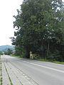 Wiśniowa - Cmentarz nr 374 - Kaplica z drzewostanem.jpg