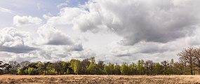 Wijnjeterper Schar, Natura 2000-gebied provincie Friesland 021.jpg