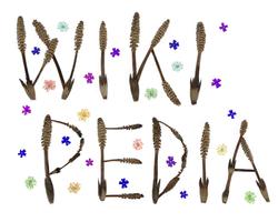 Pressed Flower Craft Wikipedia