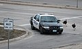 Wild turkeys chase a police car in Moorhead, MN, on Monday, Apr. 29, 2013.jpg