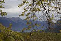 Wilderswil - panoramio - Patrick Nouhailler's… (44).jpg