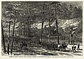 William Waud - Burning of McPhersonville 1865 - final Harper's Weekly version.jpg