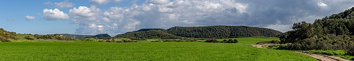 Winter fields, Karpaz, Northern Cyprus.jpg