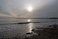 Winter sun on the south Devon coast.jpg