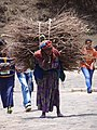 Woman Bearing Burden of Firewood - Lalibela - Ethiopia (8724825637).jpg