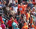 Woman in Custody at Dolphins Game.jpg