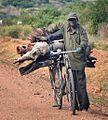 Wood Collector, Uganda (15058365789).jpg