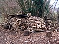 Wood pile at Priestley Wood - geograph.org.uk - 1100366.jpg