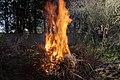 Wraxall 2013 MMB 53 Bonfire.jpg