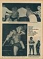 Wrestling Revue June 1973 page 18.jpg
