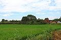 Wuyishan Chengcun Hancheng Yizhi 2012.08.24 10-51-57.jpg