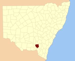 Wynyard County - Location in New South Wales