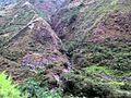 Yanango, Peru - panoramio - Tours Centro Peru (6).jpg