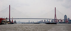 Yangpu Bridge.jpg