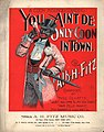 You ain't de only coon in town (1897).jpg