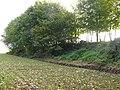 Zottegem Oude Trambaan Houtkanten op talud (6) - 277454 - onroerenderfgoed.jpg