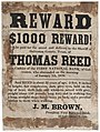 $1000 REWARD! will be paid of the arrest and delivery to the Sheriff of Galveston County, Texas, of THOMAS REED, late cashier of the FIRST NATIONAL BANK, of Galveston, who absconded in the morning of (7976728042).jpg