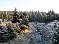 Černá Smědá - panoramio.jpg