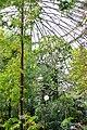 Ботанический сад. Субтропический маршрут-2.jpg