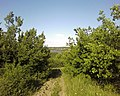 Вид з Лисої гори в сторону Каховки.jpg