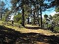 Пътя към върха - panoramio.jpg