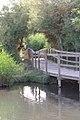 محمية الأزرق المائية - panoramio (1).jpg