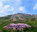 مناظرزیبای کوه سهند مراغه - panoramio (5).jpg