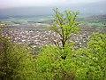 نمای زیبا از کیاسر - panoramio.jpg