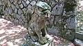与謝野町 物部神社 狛犬.jpg