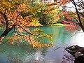 五色(Different colors) - panoramio.jpg
