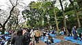 井の頭公園 - panoramio (22).jpg