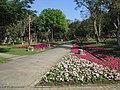 嘉義市 嘉義公園 - panoramio (3).jpg