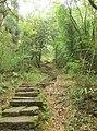 大王峰石阶 - Stone Steps Towards the Great King Peak - 2010.09 - panoramio.jpg