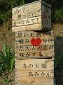 島みかん (4668215904).jpg