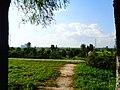 未央 渭河城市运动河堤路上向北看陵 03.jpg