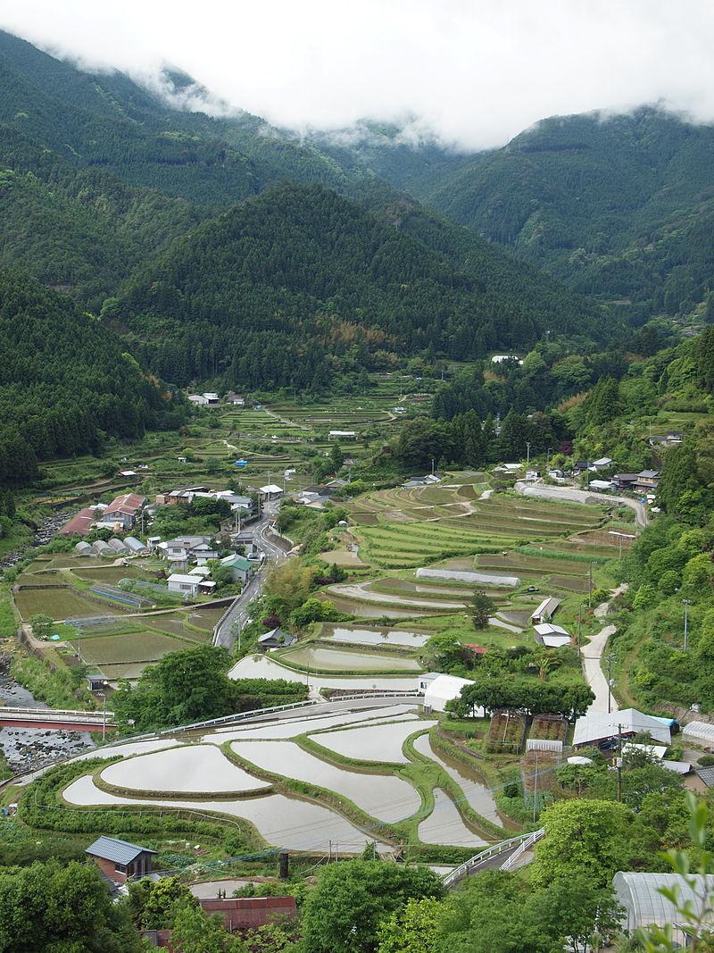 徳島県中部に位置する上勝町 : これは凄い…徳島に「葉っぱ ...