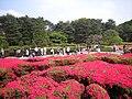 神代植物公園 2008-04-27 - panoramio (2).jpg