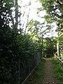 近くは林道に囲まれていてうっそうとしている。何か、怖い気がするが! 2013-07-07 16-43.jpg