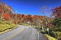 霧降高原付近の風景 - panoramio.jpg