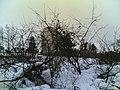 - panoramio - jampe (6).jpg