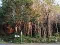 0020 Reserva de la Biosfera Terras do Miño.jpg