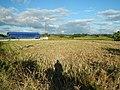 0126jfLandscapes Sunsets Fields Maronquillo San Rafael Bulacanfvf 05.JPG